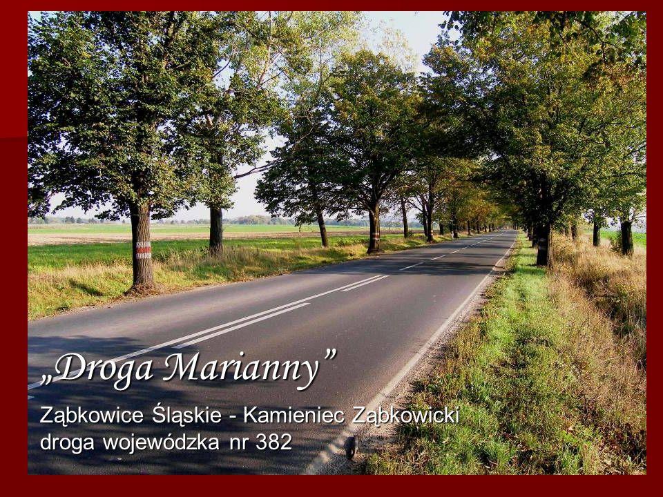 Droga Marianny Ząbkowice Śląskie - Kamieniec Ząbkowicki droga wojewódzka nr 382