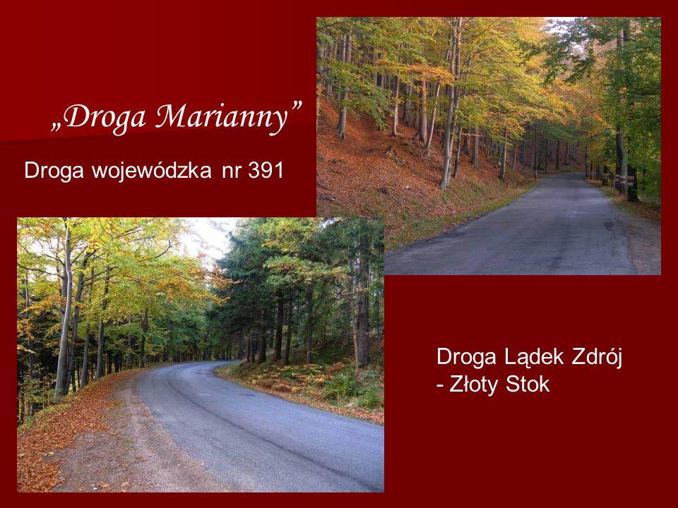 Droga Lądek Zdrój - Złoty Stok Droga Marianny Droga wojewódzka nr 391