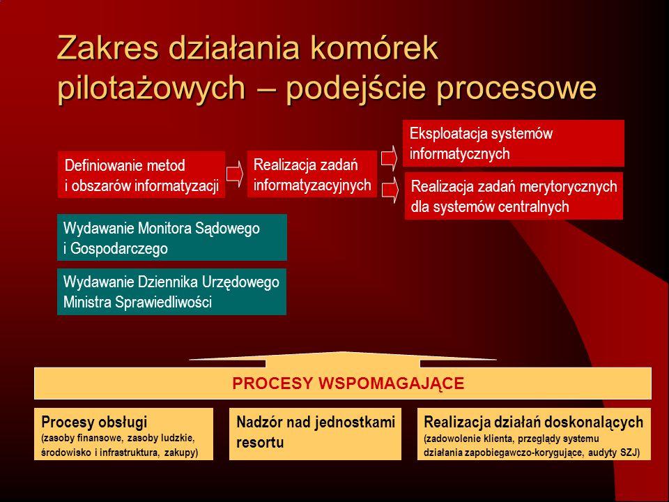 Zakres działania komórek pilotażowych – podejście procesowe Definiowanie metod i obszarów informatyzacji Realizacja zadań informatyzacyjnych Eksploata