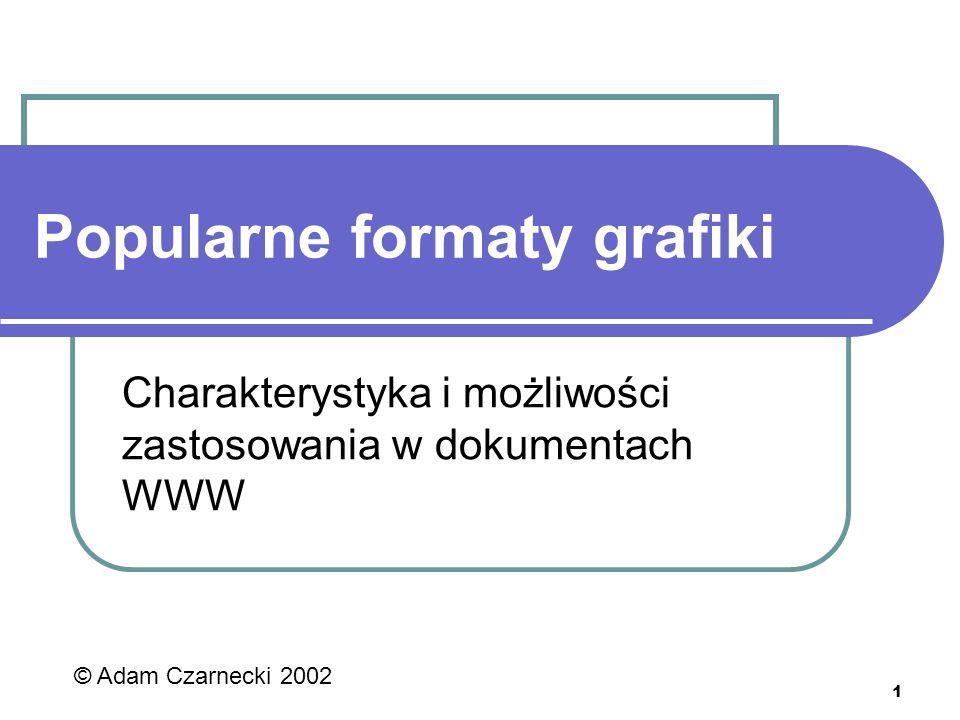 1 Popularne formaty grafiki Charakterystyka i możliwości zastosowania w dokumentach WWW © Adam Czarnecki 2002