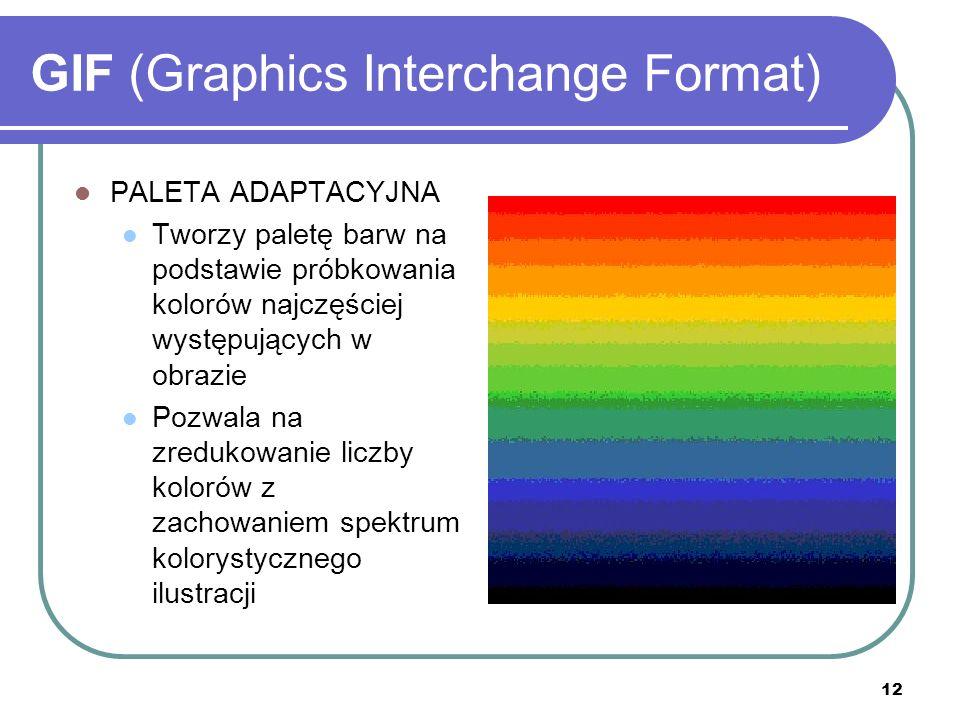 12 GIF (Graphics Interchange Format) PALETA ADAPTACYJNA Tworzy paletę barw na podstawie próbkowania kolorów najczęściej występujących w obrazie Pozwal