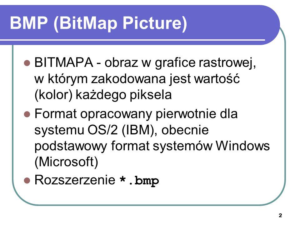 2 BMP (BitMap Picture) BITMAPA - obraz w grafice rastrowej, w którym zakodowana jest wartość (kolor) każdego piksela Format opracowany pierwotnie dla