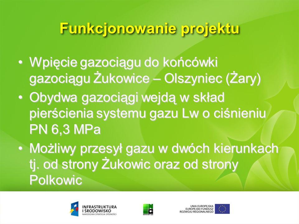 Funkcjonowanie projektu (źródło OGP Gaz-System S.A.) przepustowośćpierścień