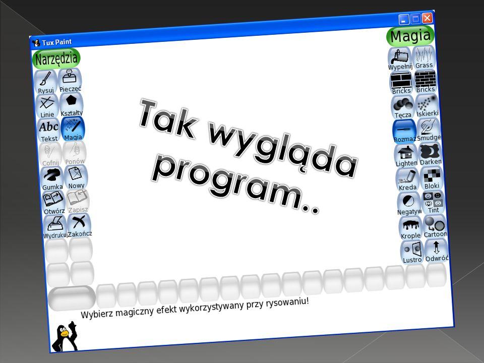 Okno programu możemy podzielić na: Pasek narzędzi Pasek funkcyjny Pasek kolorów
