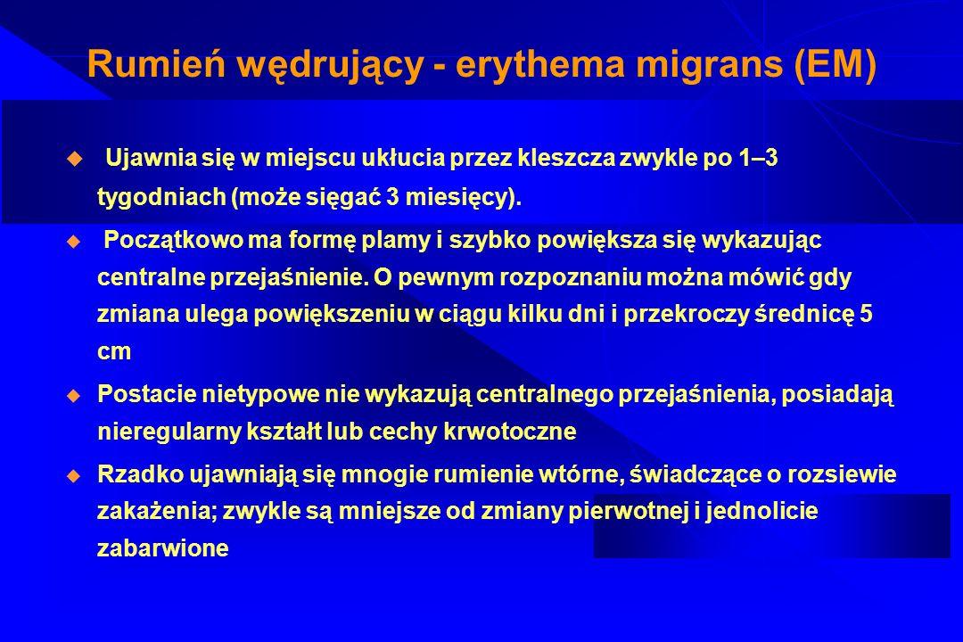 Rumień wędrujący - erythema migrans (EM) Dodatkowe objawy: świąd skóry, powiększenie węzłów chłonnych w okolicy zmiany, objawy ogólne (ból głowy, gorączka, bóle mięśniowo-stawowe) EM zanika w ciągu kilku dni od rozpoczęcia prawidłowej antybiotykoterapii, co jednak nie jest równoznaczne z eliminacją zakażenia.