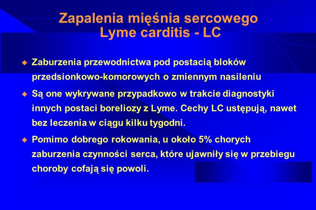 Pseudochłoniak boreliozowy Borrelia lymphocytoma - BL Ujawnia się u mniej niż 1% chorych (częściej u dzieci niż dorosłych), zwykle w kilka tygodni po ukłuciu przez kleszcza, jako pojedynczy, sino-czerwony, niebolesny guzek.