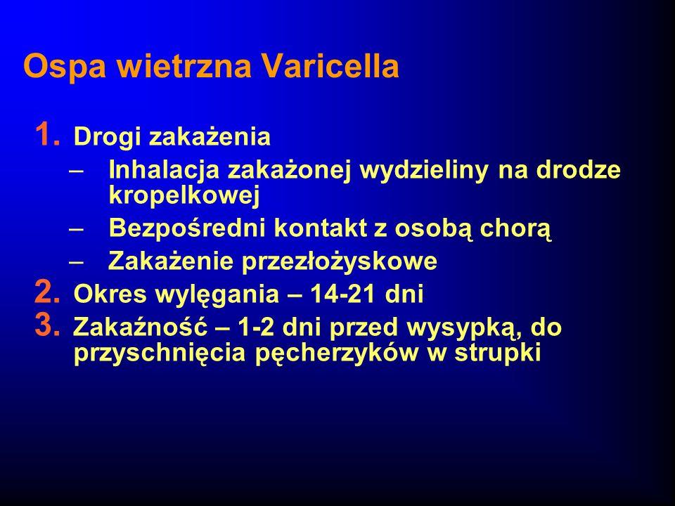 Ospa wietrzna Varicella 1. Drogi zakażenia –Inhalacja zakażonej wydzieliny na drodze kropelkowej –Bezpośredni kontakt z osobą chorą –Zakażenie przezło