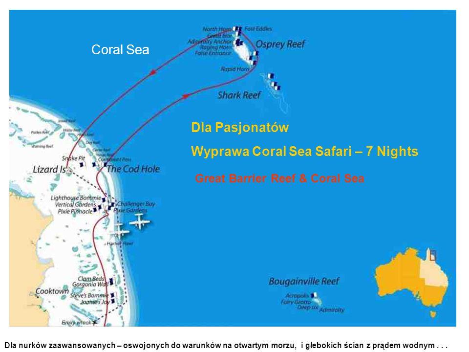 Coral Sea Dla nurków zaawansowanych – oswojonych do warunków na otwartym morzu, i głebokich ścian z prądem wodnym... Dla Pasjonatów Wyprawa Coral Sea