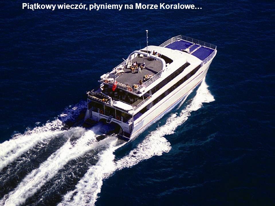 Piątkowy wieczór, płyniemy na Morze Koralowe… !