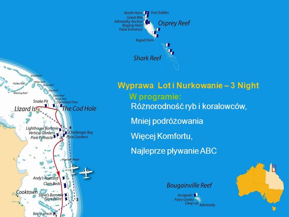 Wyprawa Lot i Nurkowanie – 3 Night W programie: Różnorodność ryb i koralowców, Mniej podróżowania Więcej Komfortu, Najleprze pływanie ABC