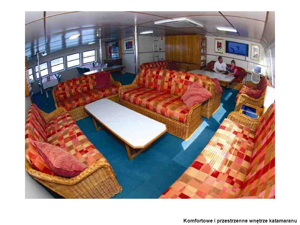 Komfortowe i przestrzenne wnętrze katamaranu