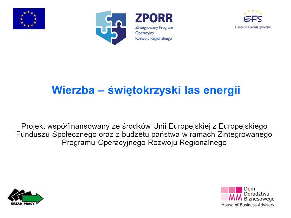 Wierzba – świętokrzyski las energii Projekt współfinansowany ze środków Unii Europejskiej z Europejskiego Funduszu Społecznego oraz z budżetu państwa w ramach Zintegrowanego Programu Operacyjnego Rozwoju Regionalnego