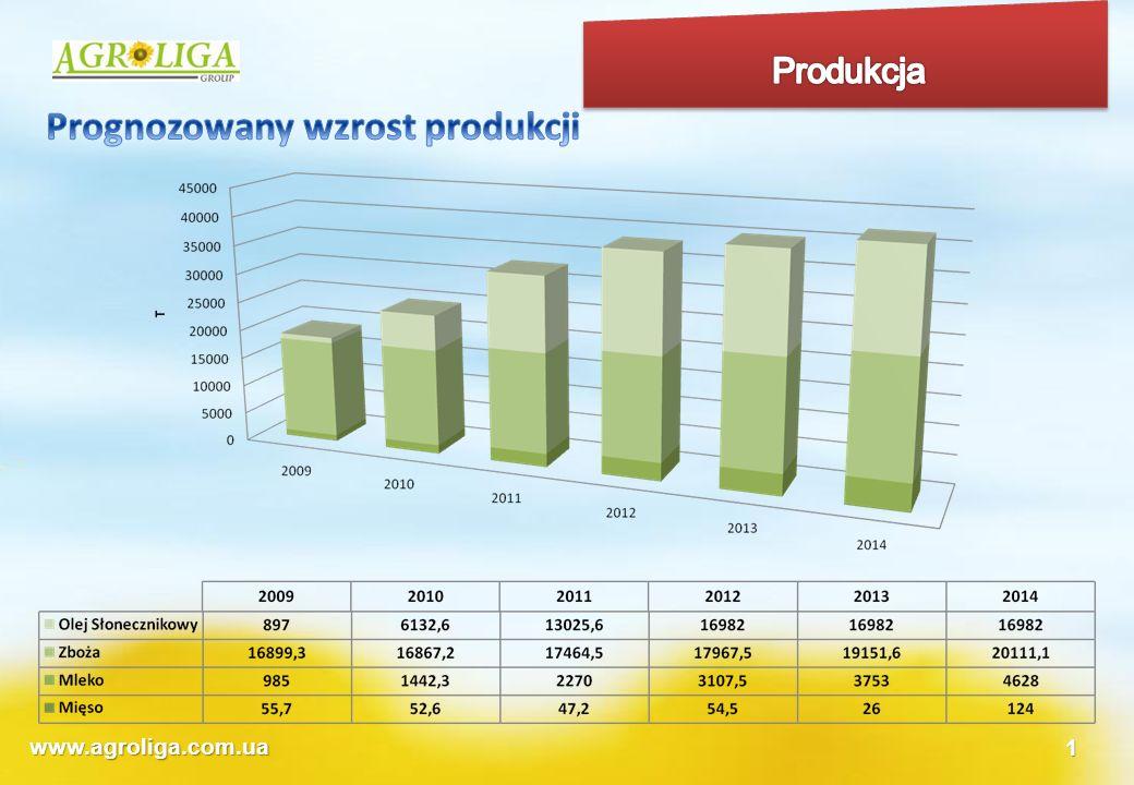 www.agroliga.com.ua1 Firmy uczestniczące w projekcie Progress Holding Sp z.o.o.