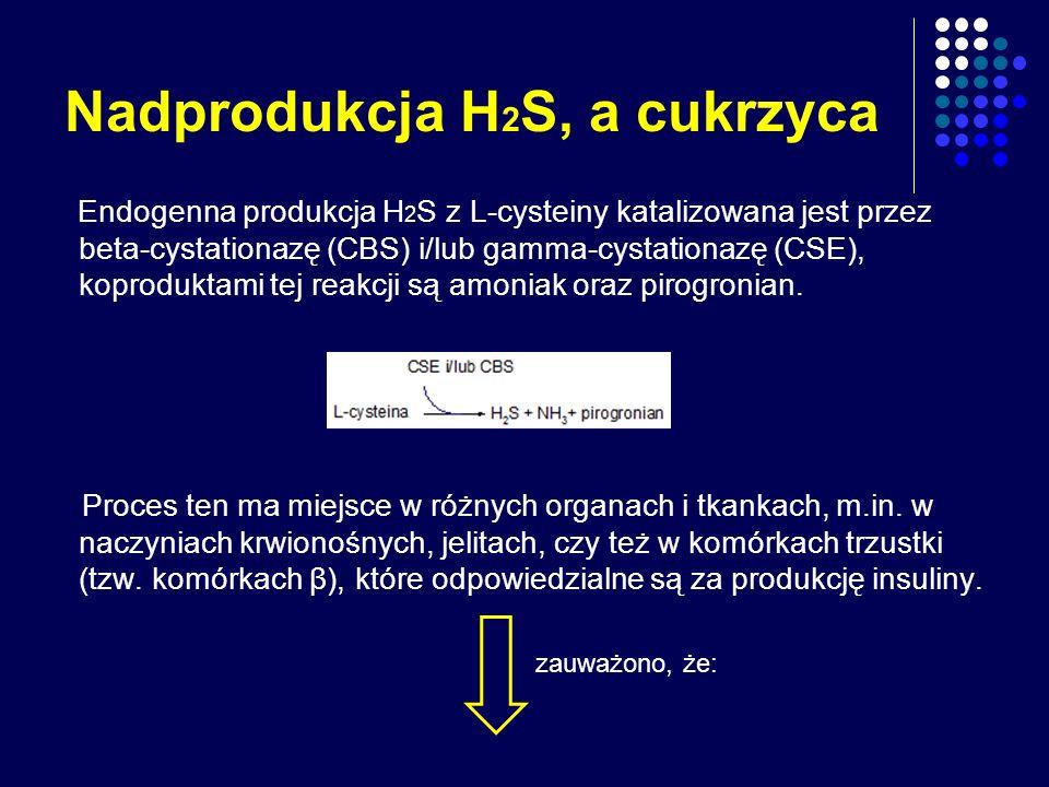 Nadprodukcja H 2 S, a cukrzyca Endogenna produkcja H 2 S z L-cysteiny katalizowana jest przez beta-cystationazę (CBS) i/lub gamma-cystationazę (CSE),