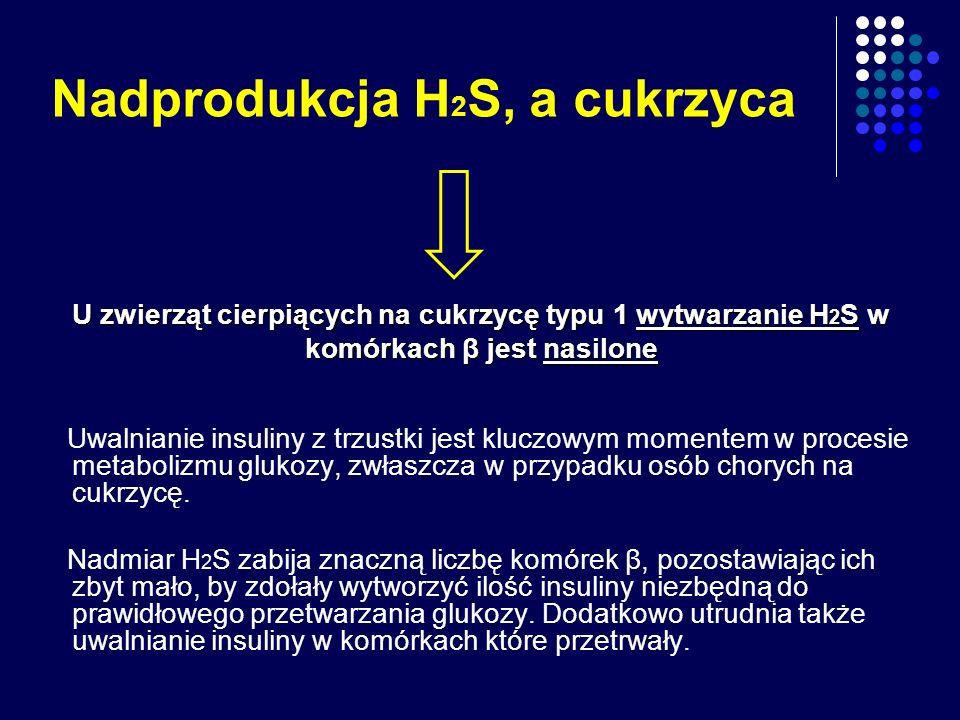 Nadprodukcja H 2 S, a cukrzyca Uwalnianie insuliny z trzustki jest kluczowym momentem w procesie metabolizmu glukozy, zwłaszcza w przypadku osób chory
