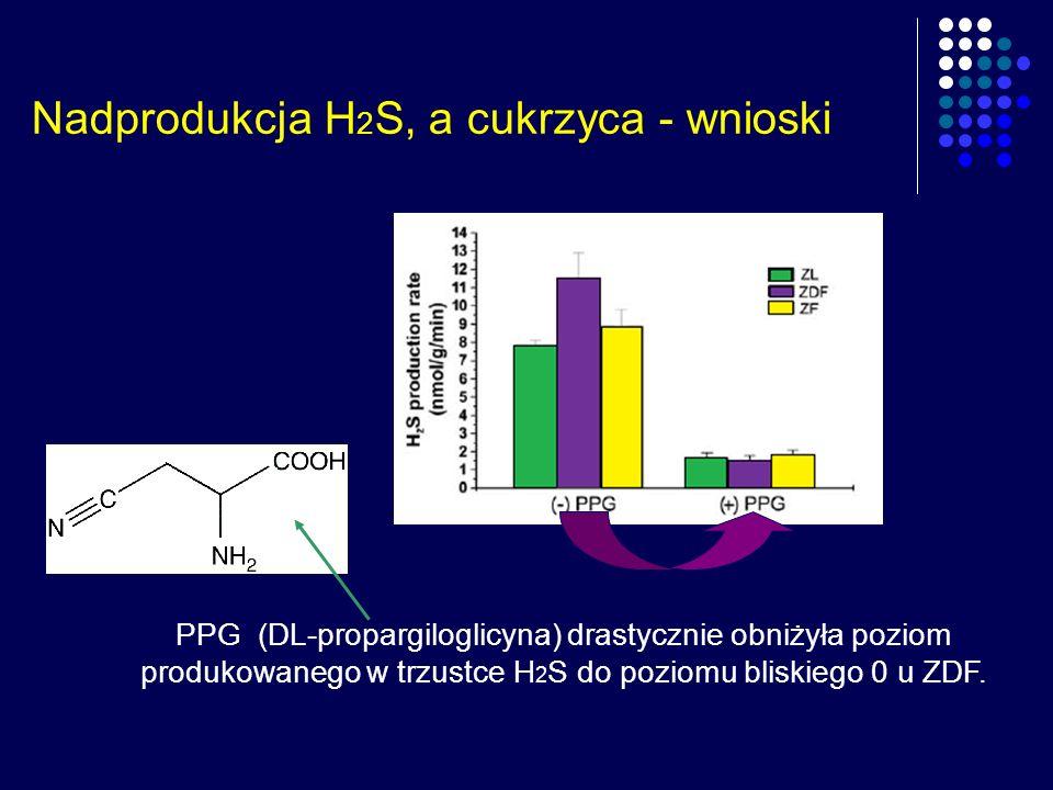 Nadprodukcja H 2 S, a cukrzyca - wnioski PPG (DL-propargiloglicyna) drastycznie obniżyła poziom produkowanego w trzustce H 2 S do poziomu bliskiego 0