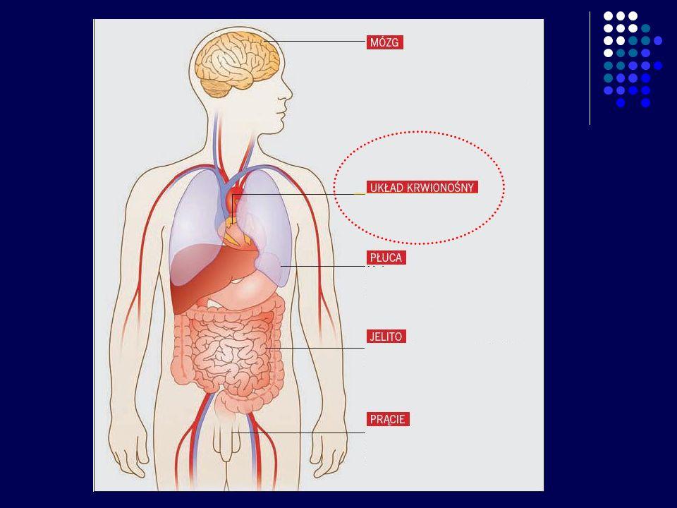 Rozszerza naczynia krwionośne Zaobserwowano, że zanurzenie naczyń krwionośnych szczura w roztworze siarkowodoru spowodowało ich rozszerzenie się.