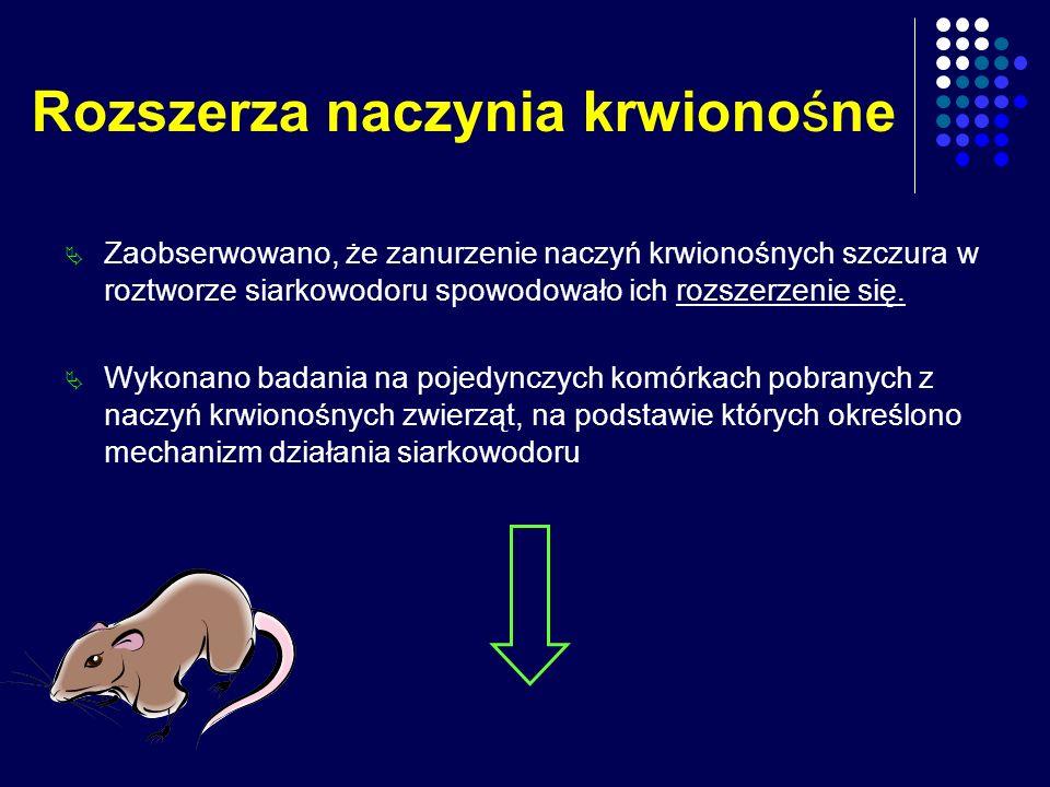 Rozszerza naczynia krwionośne Zaobserwowano, że zanurzenie naczyń krwionośnych szczura w roztworze siarkowodoru spowodowało ich rozszerzenie się. Wyko