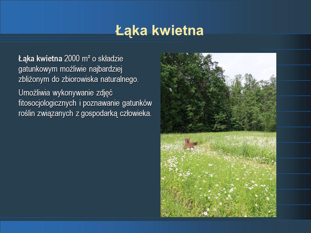 Łąka kwietna 2000 m² o składzie gatunkowym możliwie najbardziej zbliżonym do zbiorowiska naturalnego. Umożliwia wykonywanie zdjęć fitosocjologicznych
