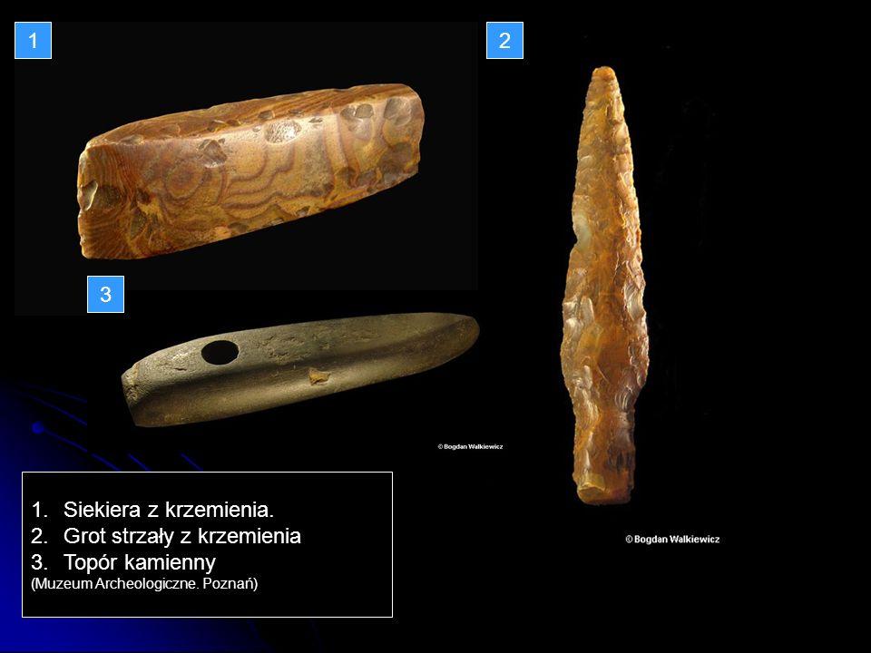 1.Siekiera z krzemienia. 2.Grot strzały z krzemienia 3.Topór kamienny (Muzeum Archeologiczne. Poznań) 12 3