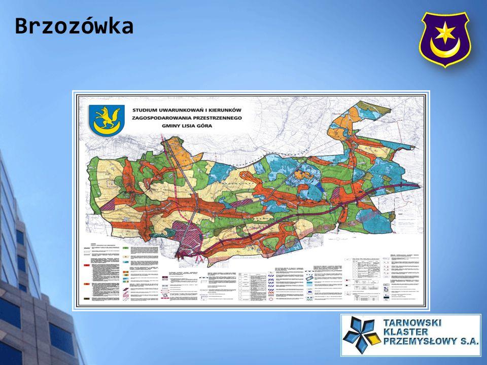 Brzozówka