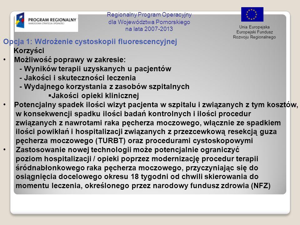 Regionalny Program Operacyjny dla Województwa Pomorskiego na lata 2007-2013 Unia Europejska Europejski Fundusz Rozwoju Regionalnego Opcja 1: Wdrożenie