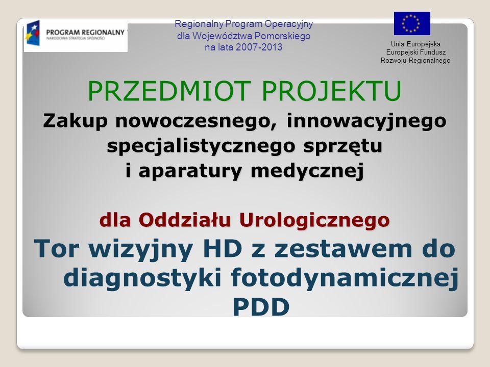 Regionalny Program Operacyjny dla Województwa Pomorskiego na lata 2007-2013 Unia Europejska Europejski Fundusz Rozwoju Regionalnego PDD PDD