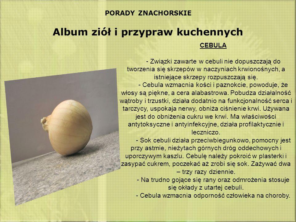 PORADY ZNACHORSKIE Album ziół i przypraw kuchennych CEBULA - Związki zawarte w cebuli nie dopuszczają do tworzenia się skrzepów w naczyniach krwionośn