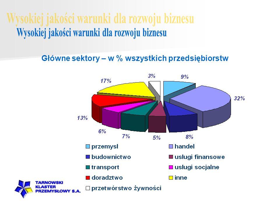 Główne sektory – w % wszystkich przedsiębiorstw