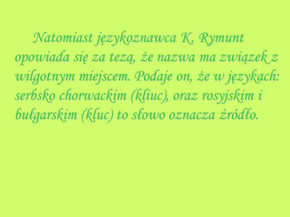 Natomiast językoznawca K. Rymunt opowiada się za tezą, że nazwa ma związek z wilgotnym miejscem. Podaje on, że w językach: serbsko chorwackim (kliuc),