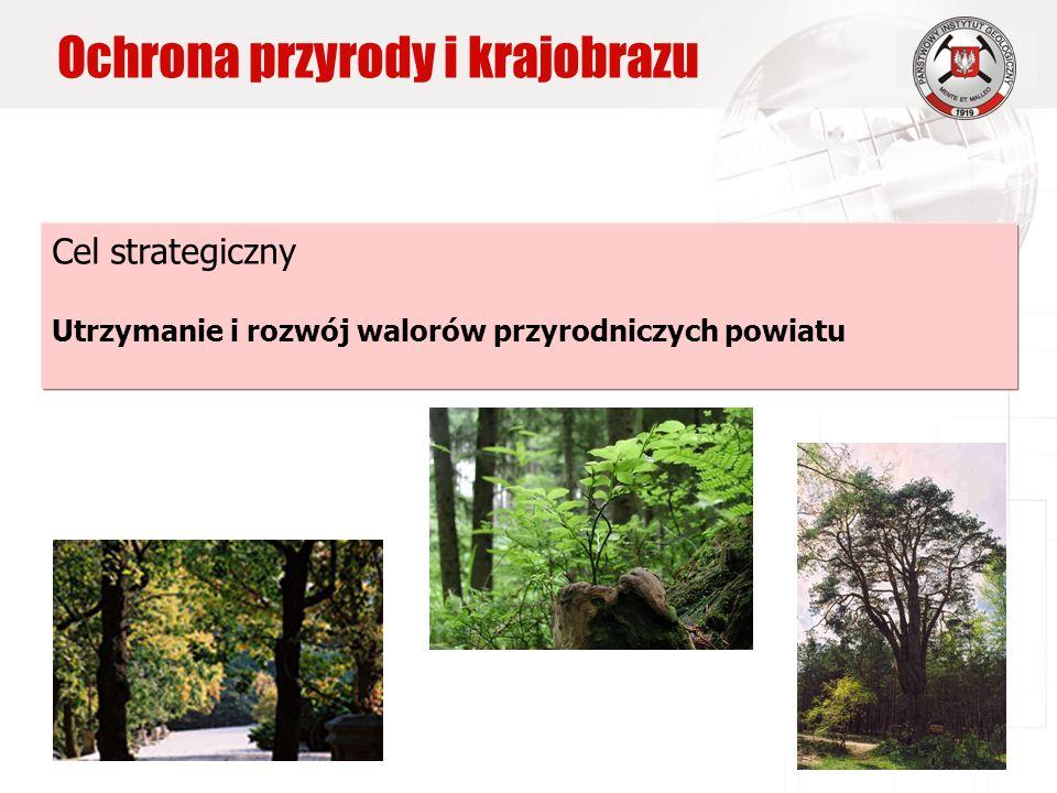 Cel strategiczny Utrzymanie i rozwój walorów przyrodniczych powiatu Ochrona przyrody i krajobrazu