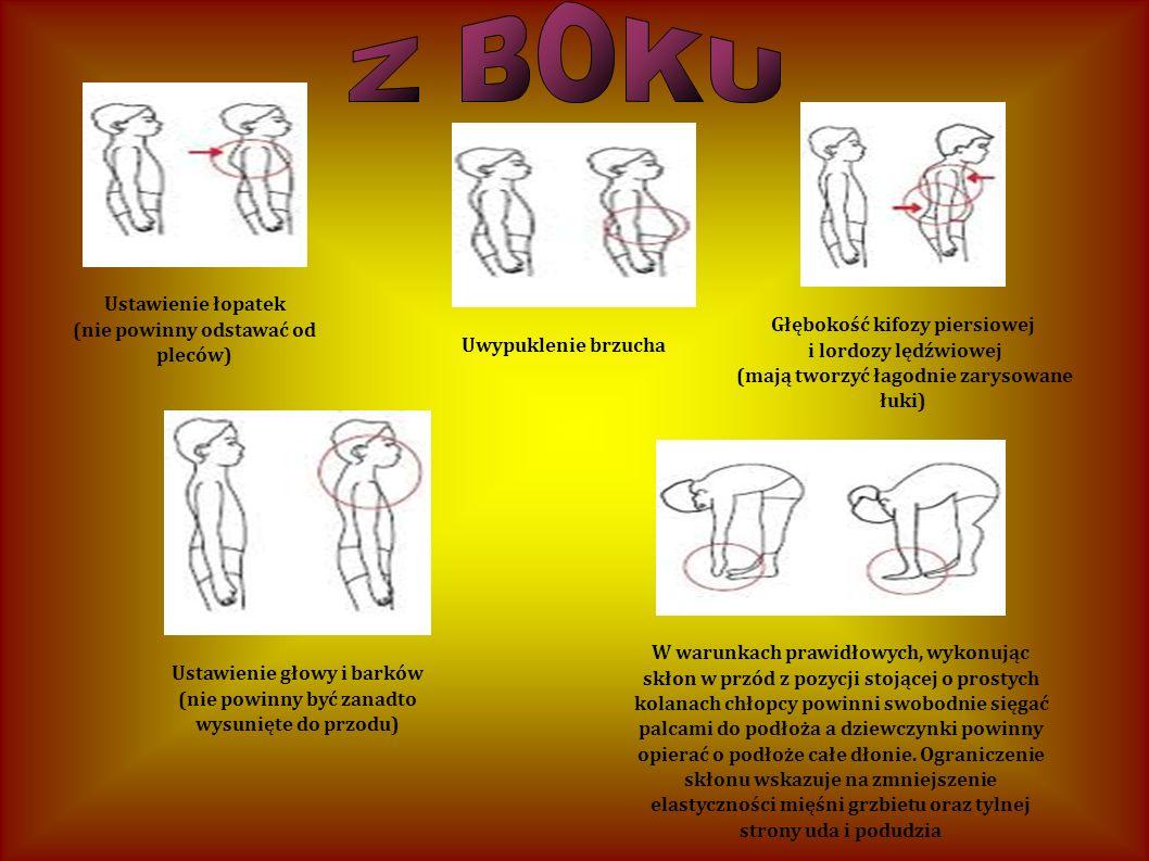 Ustawienie łopatek (nie powinny odstawać od pleców) Uwypuklenie brzucha Głębokość kifozy piersiowej i lordozy lędźwiowej (mają tworzyć łagodnie zaryso