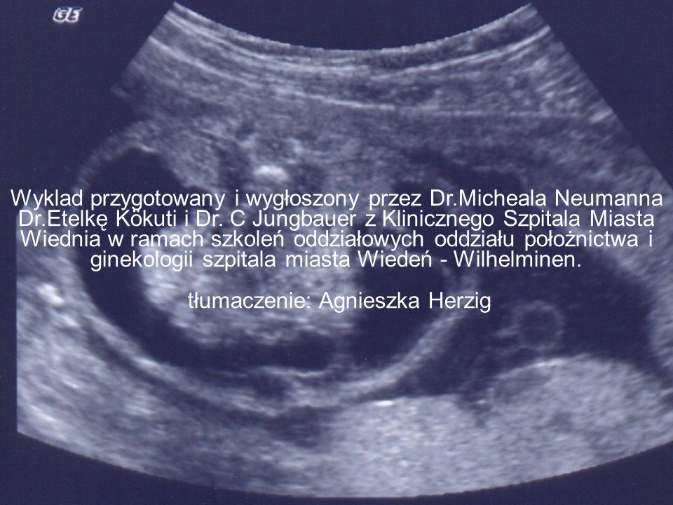 Wyklad przygotowany i wygłoszony przez Dr.Micheala Neumanna Dr.Etelkę Kökuti i Dr.