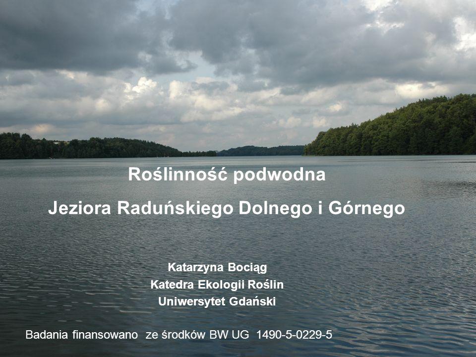 Badania prowadzono w latach 2003 i 2005, metodą nurkowania, w 82 transektach lokowanych wzdłuż linii brzegowej obu jezior.
