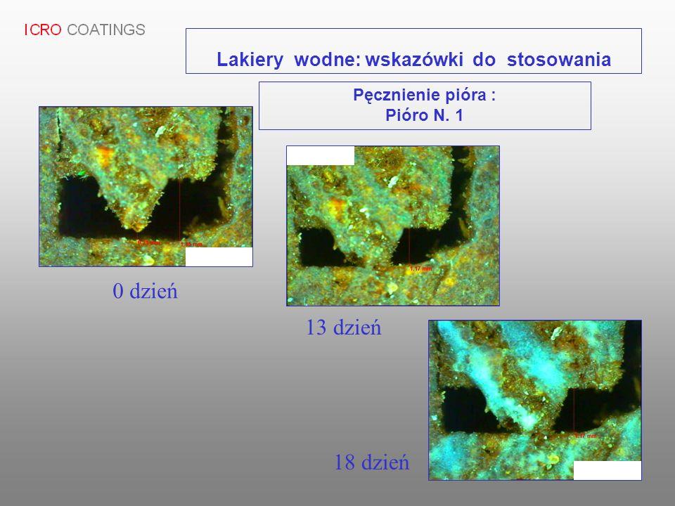 Pęcznienie pióra : Pióro N. 1 0 dzień 13 dzień 18 dzień Lakiery wodne: wskazówki do stosowania