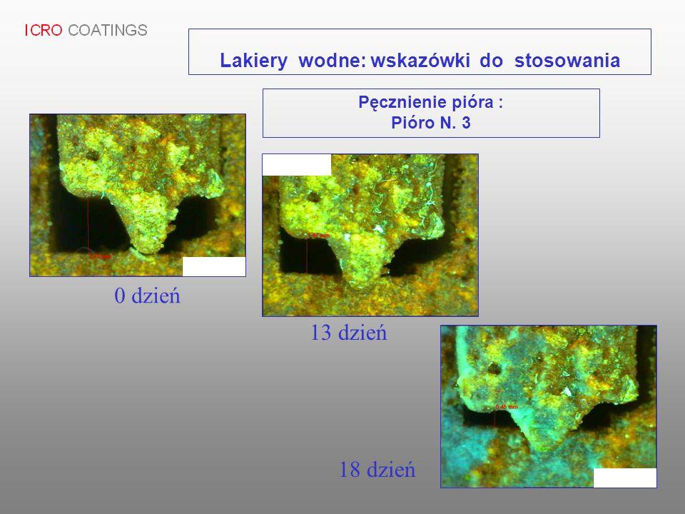 0 dzień 13 dzień 18 dzień Lakiery wodne: wskazówki do stosowania Pęcznienie pióra : Pióro N. 3