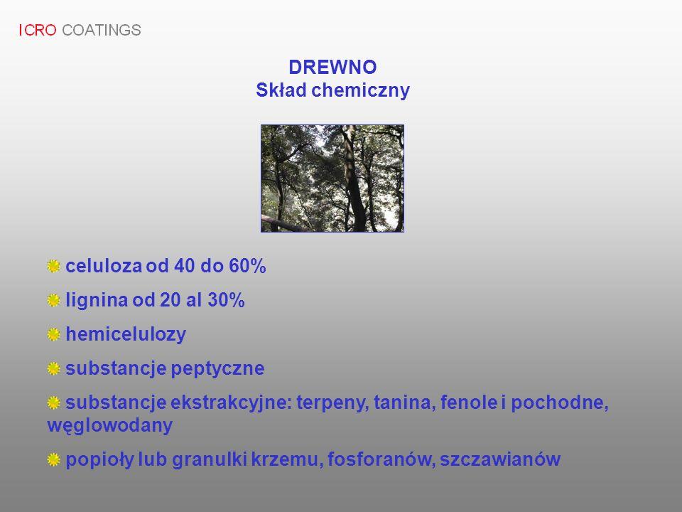 DREWNO Skład chemiczny celuloza od 40 do 60% lignina od 20 al 30% hemicelulozy substancje peptyczne substancje ekstrakcyjne: terpeny, tanina, fenole i