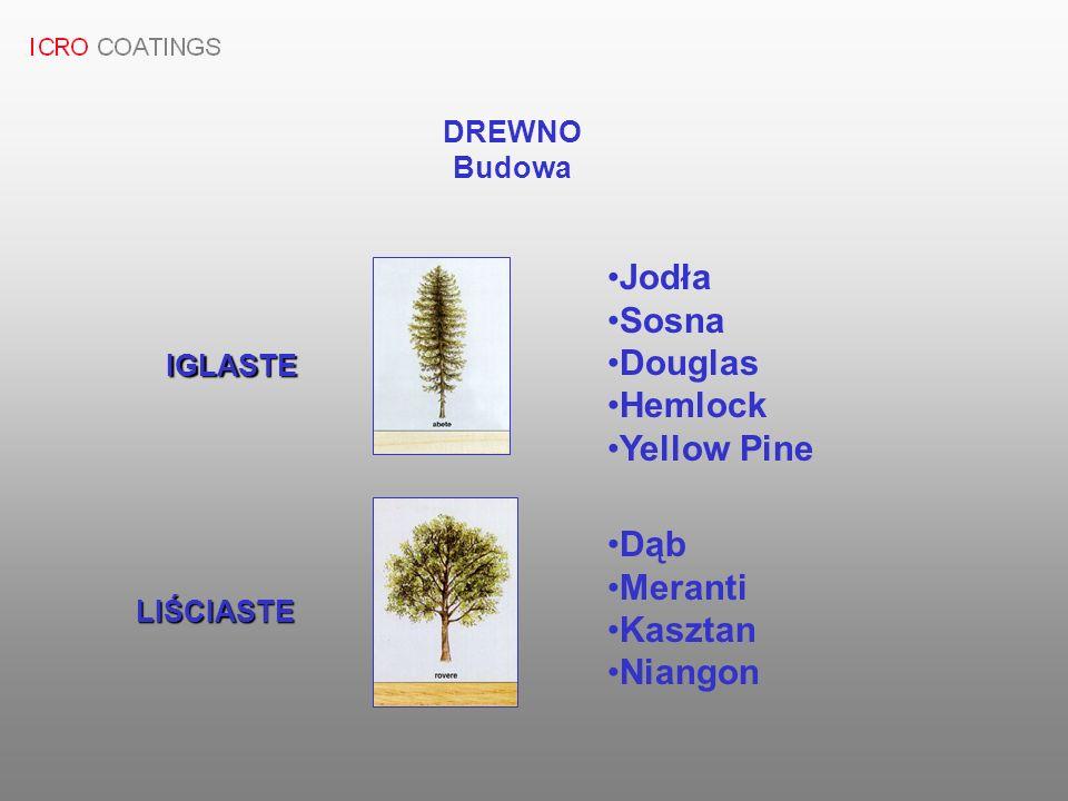 DREWNO Budowa IGLASTE LIŚCIASTE Jodła Sosna Douglas Hemlock Yellow Pine Dąb Meranti Kasztan Niangon