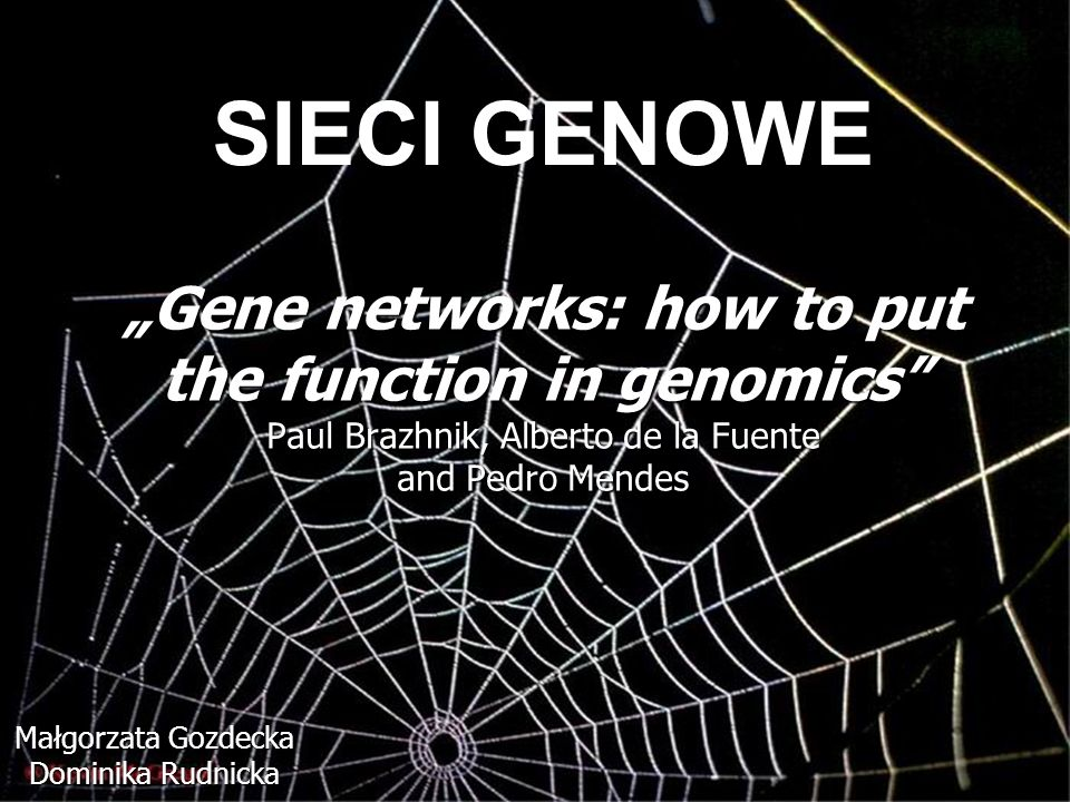 Gene networks: how to put the function in genomics Paul Brazhnik, Alberto de la Fuente and Pedro Mendes Małgorzata Gozdecka Dominika Rudnicka SIECI GE
