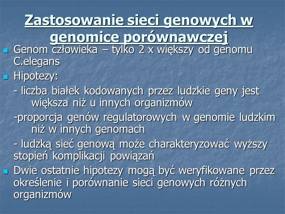 Zastosowanie sieci genowych w genomice porównawczej Genom człowieka – tylko 2 x większy od genomu C.elegans Genom człowieka – tylko 2 x większy od gen