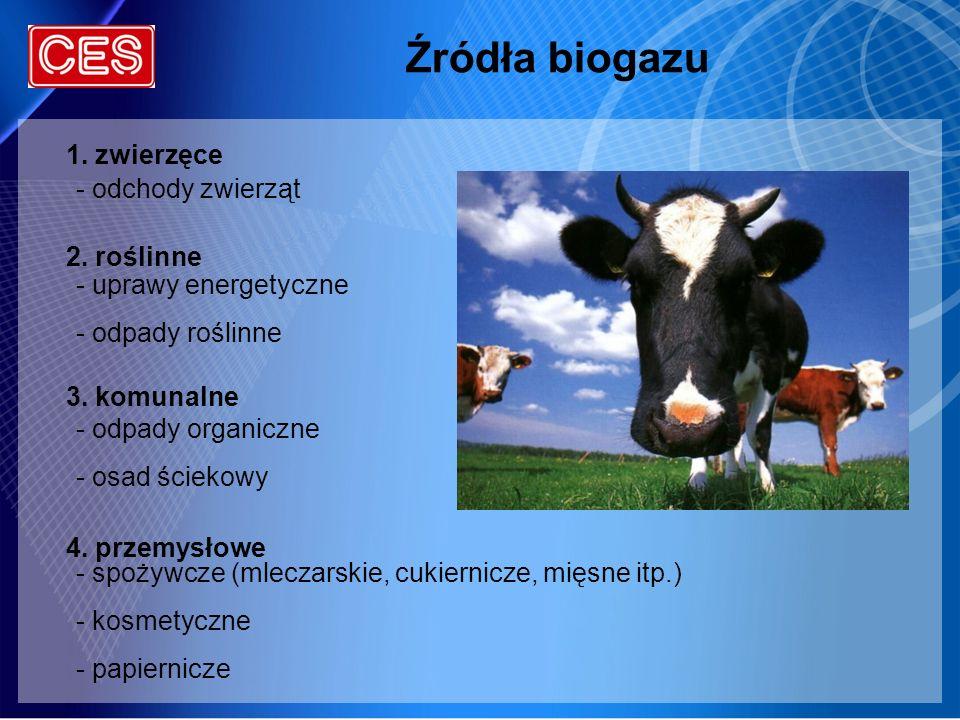 Źródła biogazu - odchody zwierząt - uprawy energetyczne - odpady roślinne - odpady organiczne - osad ściekowy - spożywcze (mleczarskie, cukiernicze, m