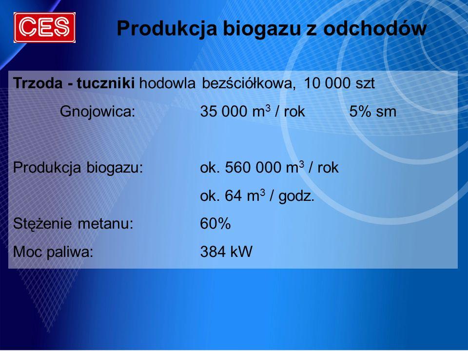 Produkcja biogazu z odchodów Trzoda - tuczniki hodowla bezściółkowa, 10 000 szt Gnojowica:35 000 m 3 / rok 5% sm Produkcja biogazu:ok. 560 000 m 3 / r