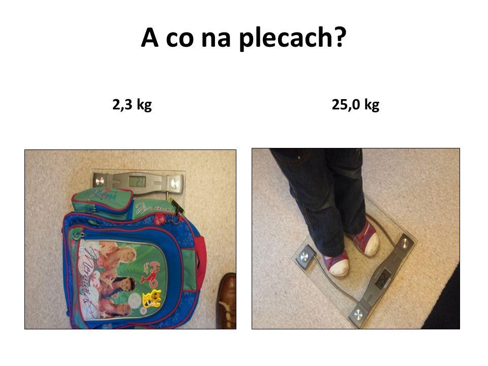A co na plecach? 2,3 kg25,0 kg
