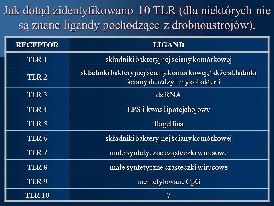 Jak dotąd zidentyfikowano 10 TLR (dla niektórych nie są znane ligandy pochodzące z drobnoustrojów). RECEPTORLIGAND TLR 1 składniki bakteryjnej ściany