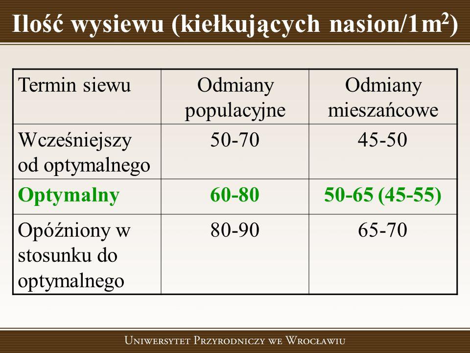 Ilość wysiewu (kiełkujących nasion/1m 2 ) Termin siewuOdmiany populacyjne Odmiany mieszańcowe Wcześniejszy od optymalnego 50-7045-50 Optymalny60-8050-