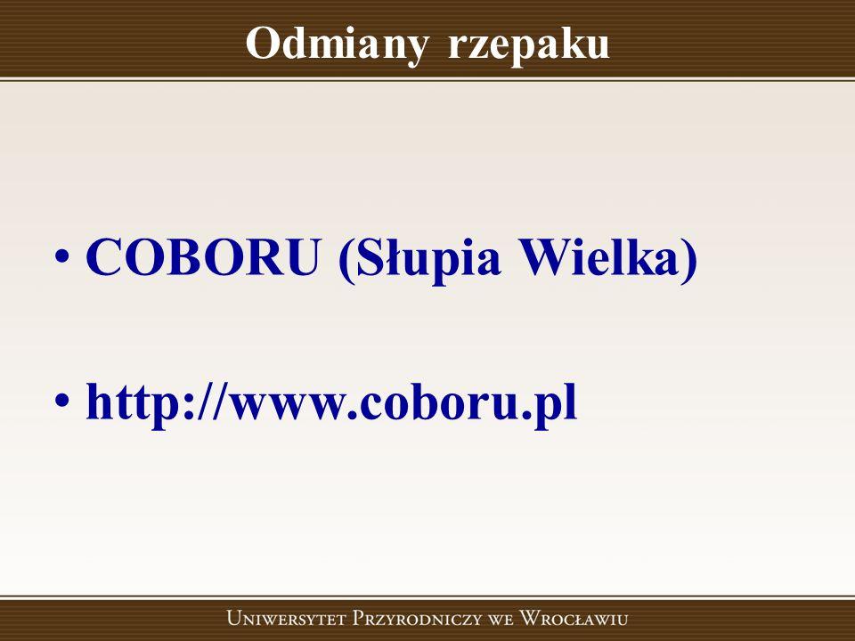 Odmiany rzepaku COBORU (Słupia Wielka) http://www.coboru.pl