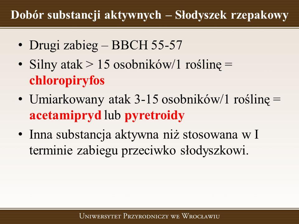 Dobór substancji aktywnych – Słodyszek rzepakowy Drugi zabieg – BBCH 55-57 Silny atak > 15 osobników/1 roślinę = chloropiryfos Umiarkowany atak 3-15 o