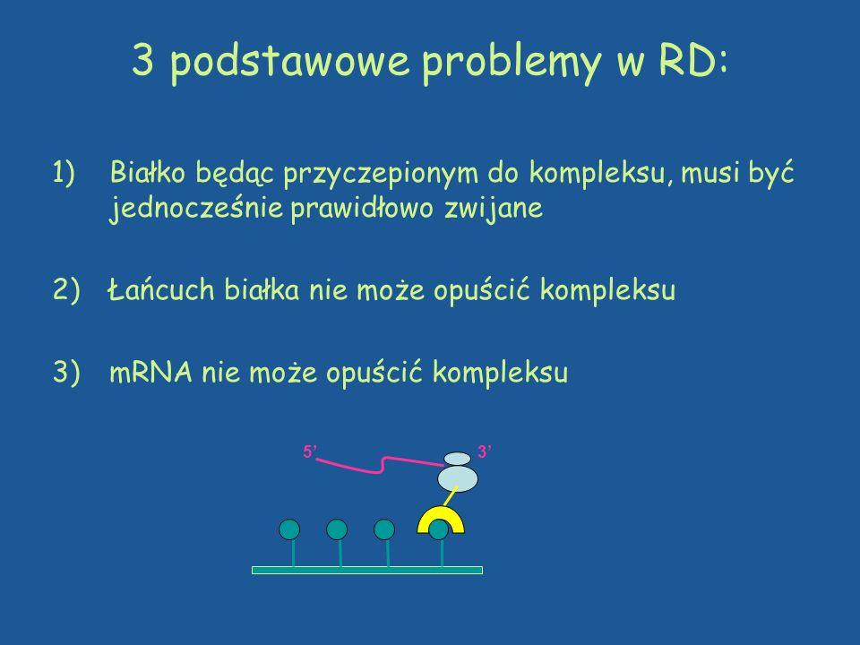 3 podstawowe problemy w RD: 1)Białko będąc przyczepionym do kompleksu, musi być jednocześnie prawidłowo zwijane 2)Łańcuch białka nie może opuścić komp