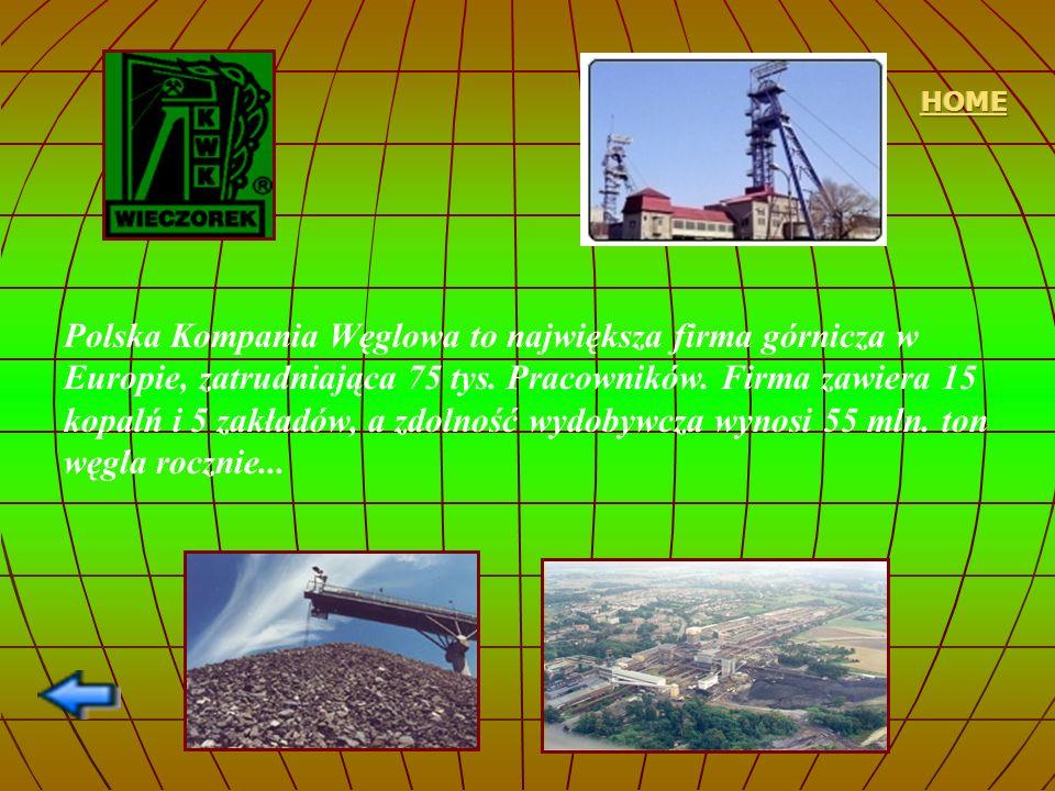 Polska Kompania Węglowa to największa firma górnicza w Europie, zatrudniająca 75 tys. Pracowników. Firma zawiera 15 kopalń i 5 zakładów, a zdolność wy