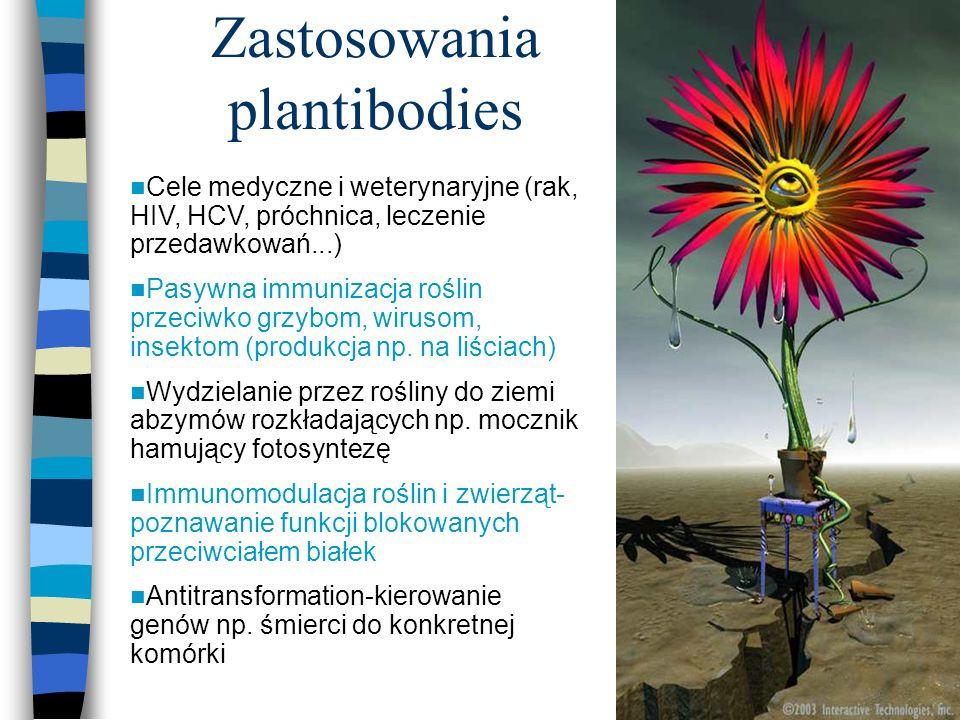 24 Zastosowania plantibodies Cele medyczne i weterynaryjne (rak, HIV, HCV, próchnica, leczenie przedawkowań...) Pasywna immunizacja roślin przeciwko g